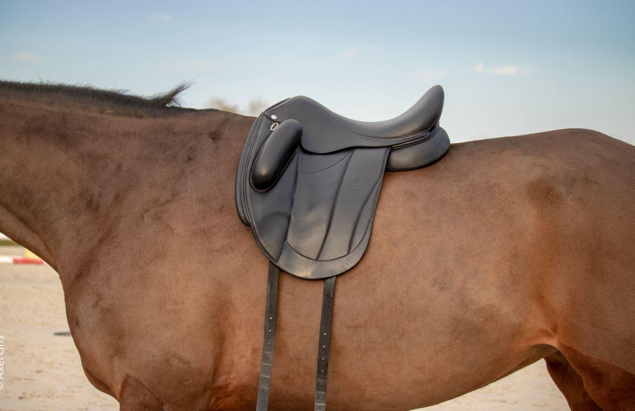 Comment savoir si sa selle est adaptée à son cheval ?